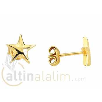 Yıldızlı Altın Küpe -14 Ayar- kk04016